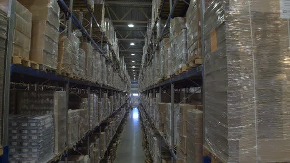 Thumbnail for Huge Warehouse and Forklifts, Racks with Goods.