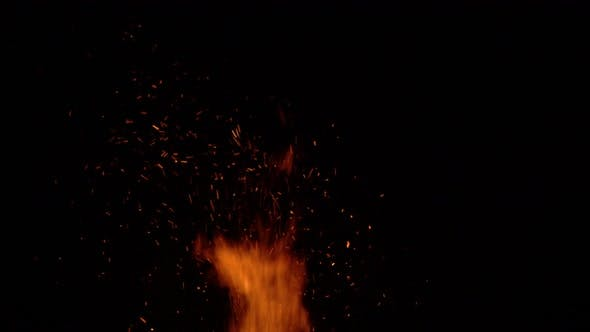 Burning Bonfire on a Black Background Surrounded By Branches