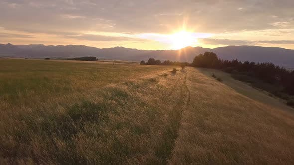 Thumbnail for Golden sunset over meadow