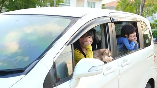 Happy Asian Children And Siberian Husky Puppy Sitting In The Car