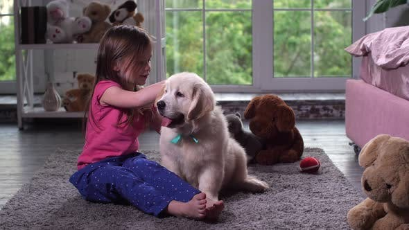 Thumbnail for Child Playing with Puppy Sitting on Carpet at Home