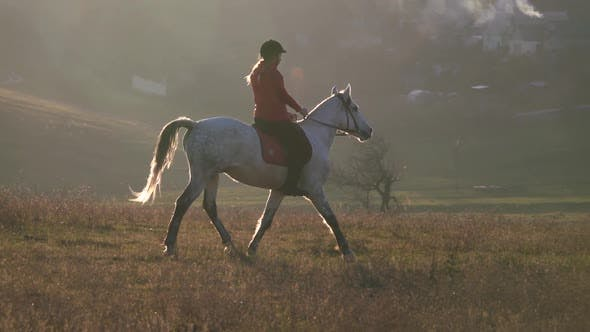 Thumbnail for Riding a Horse Across a Field Around a Residential Sector with Houses. Slow Motion