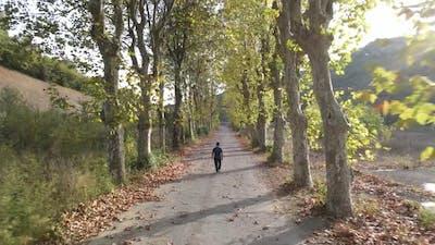 Walking Autumn Road Drone
