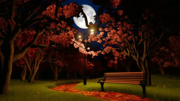 Thumbnail for Cherry Blossom In Night Light With Moon